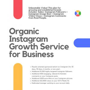 Instagram Organic Growth 2021